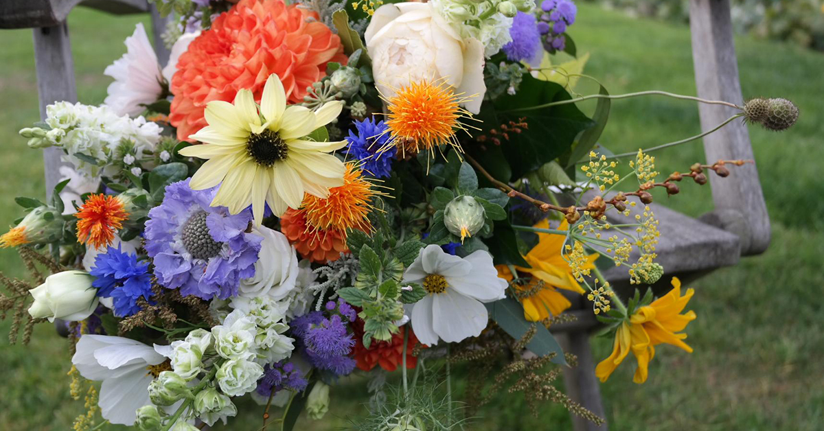 A Great summer for British Flowers